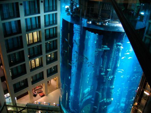 hotel fish tank